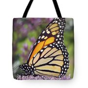 Butterfly 024 Tote Bag