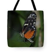 Butterfly 025 Tote Bag