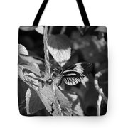 Butterfly 1 Tote Bag