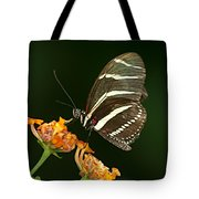 Butterfly 50 Tote Bag