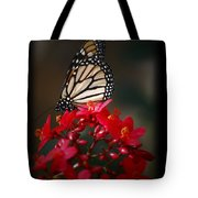 Butterfly 6 Tote Bag