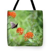 Butterfly A L'orange Tote Bag