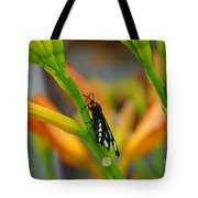 Butterfly An3598-13 Tote Bag