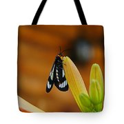 Butterfly An3606-13 Tote Bag