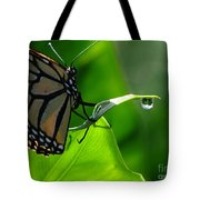 Butterfly And Water Tote Bag