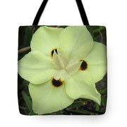 Butterfly Anthers Tote Bag