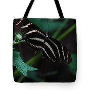 Butterfly Art 2 Tote Bag