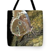 Butterfly At Night Tote Bag
