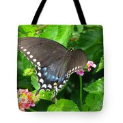 Butterfly Ballot Tote Bag