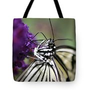 Butterfly Close Up  Tote Bag