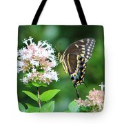 Butterfly Dining  Tote Bag