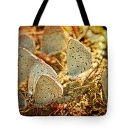 Butterfly Gathering Tote Bag