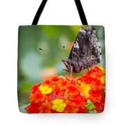 Butterfly Hanging Out On Wildflowers Tote Bag