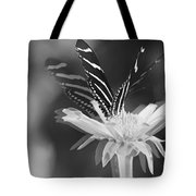 Butterfly In Motion #1952bw Tote Bag