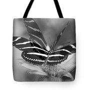 Butterfly In Motion Tote Bag