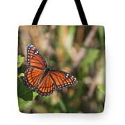 Butterfly In The Everglades Tote Bag