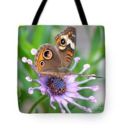 Butterfly On African Daisy Tote Bag