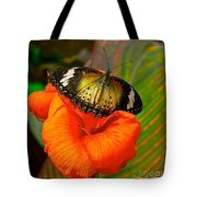 Butterfly On Canna Flower Tote Bag