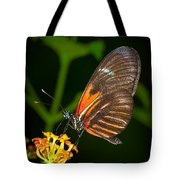 Butterfly On Orange Bloom Tote Bag
