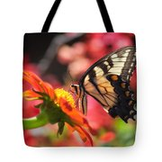 Butterfly On Orange Sunflower Tote Bag