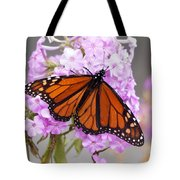 Butterfly On Pink Phlox Tote Bag