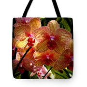 Butterfly Orchids Tote Bag