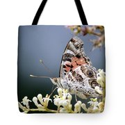 Butterfly - Painted Lady - Tasty Out Here Tote Bag