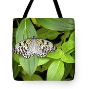 Butterfly Perching On Leaf In A Garden Tote Bag