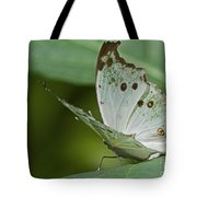 Butterfly Ready For Take Off Tote Bag