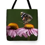 Butterfly Red Admiral On Echinacea Tote Bag