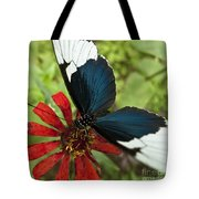 Butterfly Sara Longwing II Tote Bag