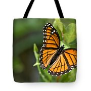 Butterfly Scene Tote Bag