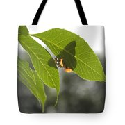Butterfly Shadow Tote Bag