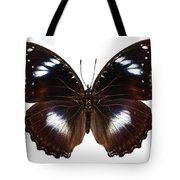 Butterfly Species Hypolimnas Bolina  Tote Bag