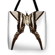 Butterfly Species Lamproptera Curius  Tote Bag