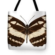 Butterfly Species Neptis Hylas  Tote Bag