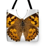 Butterfly Species Vanessa Cardui  Tote Bag