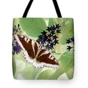 Butterfly - Swallowtail - Photopower 140 Tote Bag