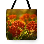 Butterfly Weed In The Sunset Tote Bag