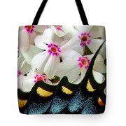 Butterfly Wing And Phlox Tote Bag