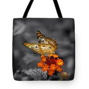 Butterfly Wings Of Sun Light Selective Coloring Black And White Digital Art Tote Bag