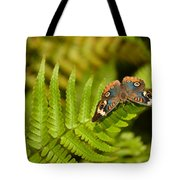 Butterfly With Eyes  Tote Bag