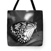 Butterfly7 Tote Bag