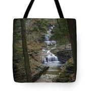 Buttermilk Falls In Autumn IIi Tote Bag by Michele Steffey
