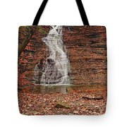 Buttermilk Falls Tote Bag by Marcia Colelli