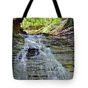 Butternut Falls Tote Bag