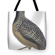 Button Quail Tote Bag by Anonymous