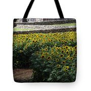 Buttonwood Tote Bag