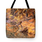 By The Bank Of The Golden Forest Tote Bag