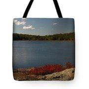 By The Lake Tote Bag